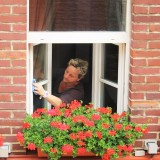 The Best Window Cleaner Products